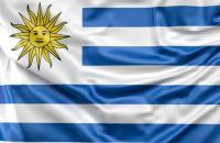 e learning nuclear uruguay